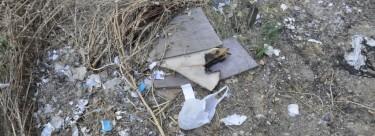 Vídeo IU: Denuncia la falta de Limpieza del río.