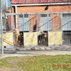 Izquierda Unida denuncia el incumplimiento de horarios de limpieza y alimentación en el albergue de animales.