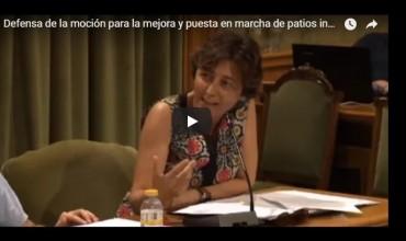 ? Vídeo de la defensa de la moción para la mejora y puesta en marcha de patios inclusivos.
