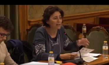 Ana Cruz: Moción IU contra los vientres de alquiler